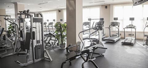 Gym, fitness centres and stadium sporting facilities